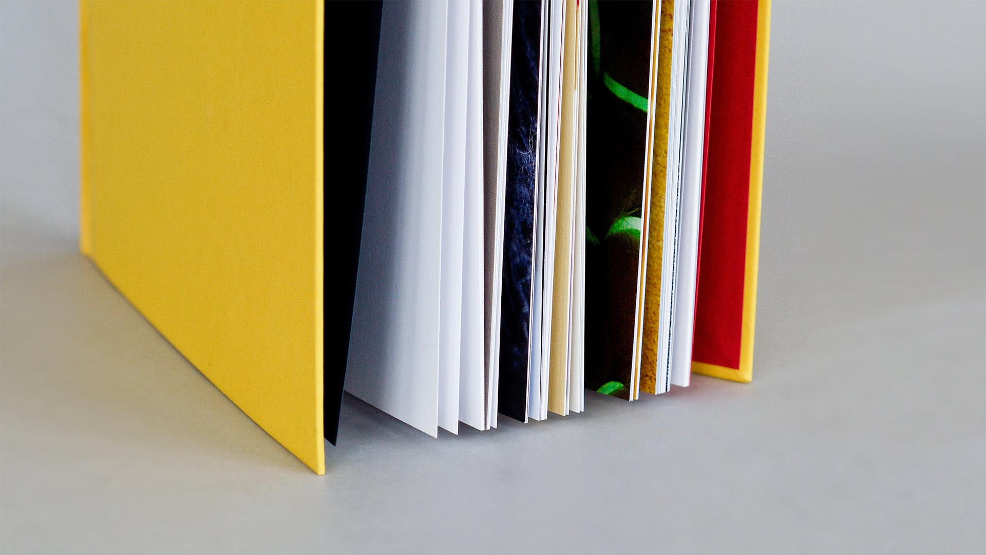 thomasdruck-farbstreifen__1140425 Thomas Verlag und Druckerei GmbH - Referenzen- Farbstreifen