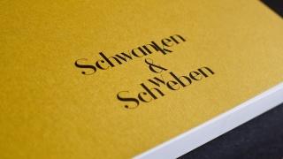 l_thomasdruck-schwanken-und-schweben__1140273 ThomasDruck - Referenzen- Schwanken & Schweben